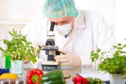 Что мы знаем о ГМО?