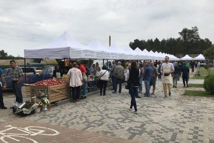 Фермерские выходные: открытие сезона Бобрицкой Ярмарки 2018