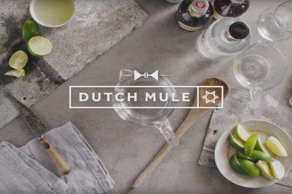 Dutch Mule