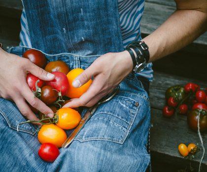Томаты и сыр, томаты и мясо, томаты и… арбуз!
