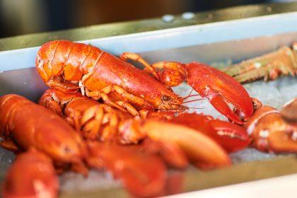 В ресторане RONIN 1 и 2 ноября предлагают заказать сет!