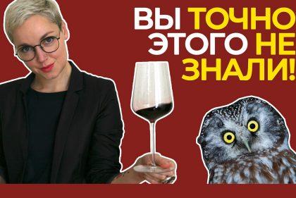 ТОП-11 вопросов сомелье! Крутые ФАКТЫ, интересные СОВЕТЫ, ЛАЙФХАКИ с вином!