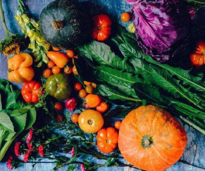 Від забутих традицій до сучасності: українські шеф-кухарі розповіли про роль української кухні сьогодні