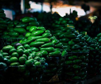 Запасы авокадо в США иссякнут через три недели, если граница с Мексикой закроется
