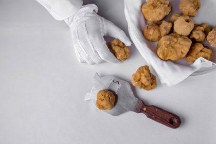 Дорогоцінний гриб: сезон трюфеля в київських ресторанах