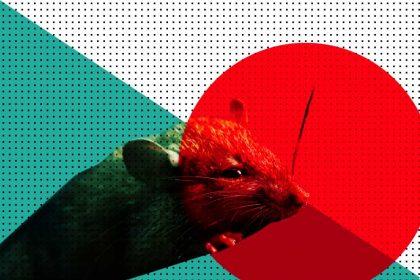У Китаї зафіксована перша смерть від нового хантавірусу