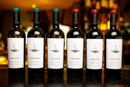 Перший політ Leleka Wines: чим цікавий новий бренд українського вина